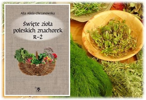 Ziola_duze