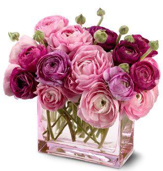 send_flowers