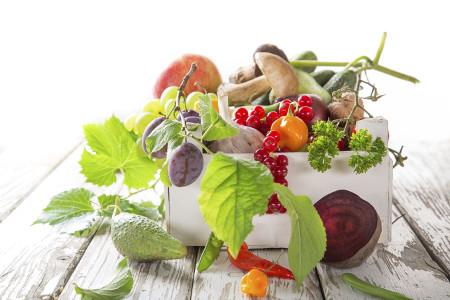 Letnie owoce, warzywa, grzyby