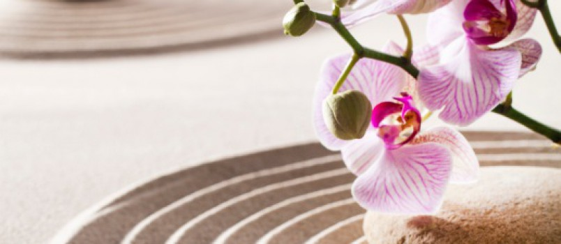 inner beauty with zen flowers