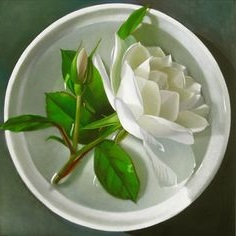 bialy_kwiat2