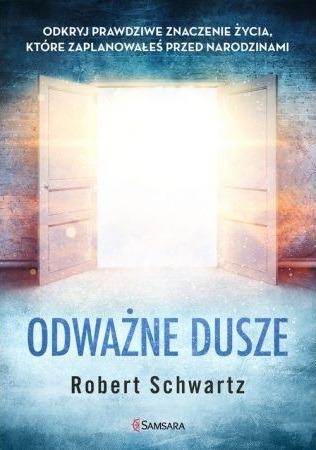 Pierwsza książka Roberta Schwartza - okładka
