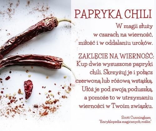 Papryka chili w magii miłosnej